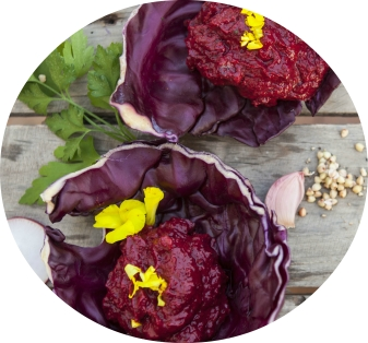 red-cabbage raw food